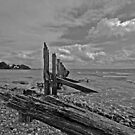 Windswept beach at Baycliff by JMChown
