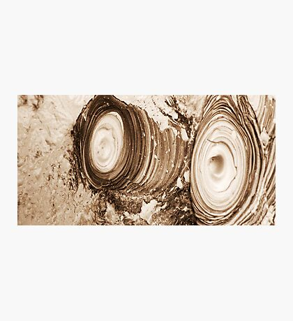 Rippled mud Photographic Print