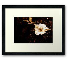 Grungy Flower Framed Print