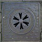 Machynlleth Access Hole by Allen Lucas