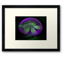 Irish Floral Globe Framed Print