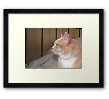 Effie Framed Print