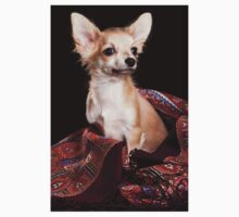 chihuahua puppy One Piece - Long Sleeve
