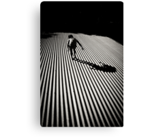 A Thief in the Night Canvas Print