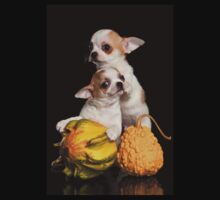 Two puppies chihuahua on a black background Kids Clothes