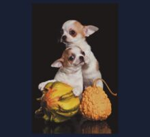 Two puppies chihuahua on a black background Kids Tee