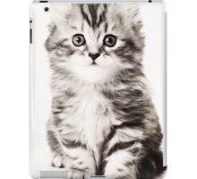 Fluffy kitten black and white photo iPad Case/Skin