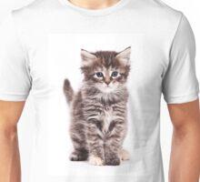 Fluffy tabby kitten Unisex T-Shirt