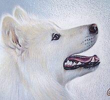 Samoyeds's smile by Elena Kolotusha