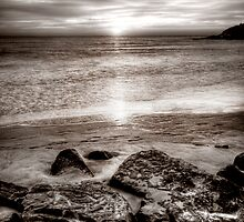 Manly beach by sparrowdk