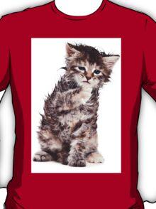 wet kitten T-Shirt