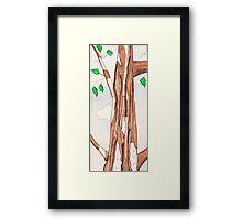 Birch Tree Framed Print