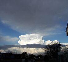 Mushroom cloud. by thsee