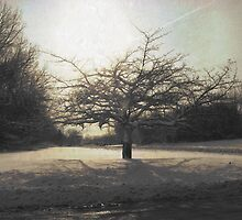 December Tree At The End Of The World by Pipewrench67