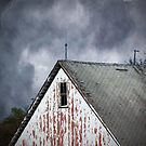 Just Before the Storm by debidabble