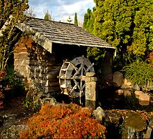 THE WATERWHEEL by Raoul Madden