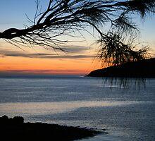 ~Penneshaw, Kangaroo Island~ by Debra LINKEVICS