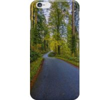 Road To Freedom iPhone Case/Skin
