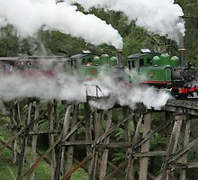 Puffing Billy by MorrieMathews