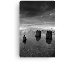 Once Were Giants Canvas Print