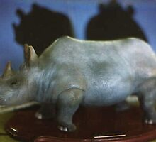 Rhino by Alex Gardiner