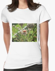 Beetle climbing on a dried chives flower Womens Fitted T-Shirt