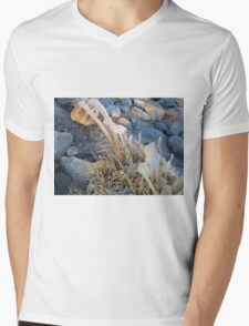ice on reeds on a cold winter day T-Shirt