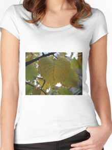 The leaf is attached to the branch of their magnificent colors Women's Fitted Scoop T-Shirt