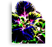 Coloured Foliage Canvas Print