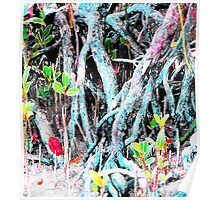 Mangrove Beginnings Poster