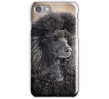 black poodle dog iPhone Case/Skin