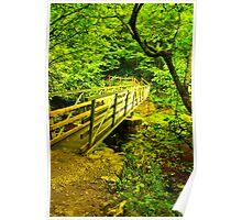 Foot Bridge - River Twiss Poster