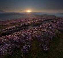 Barden Fell Sunrise by SteveMG