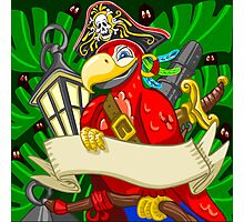 Adventure Time - Boatswain Corsair Red Parrot Photographic Print