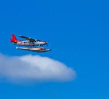 See Sea Plane - Sydney - Australia by Bryan Freeman