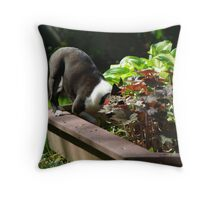 Digging in the flower bed?  No, not me! Throw Pillow