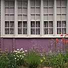 a purple dwelling by Lynne Prestebak
