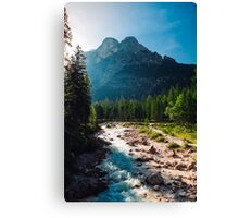 River Canvas Print