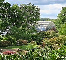 Wisley in May by John Thurgood