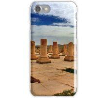 Cyrus' Palace - Pasargadae - IRAN iPhone Case/Skin