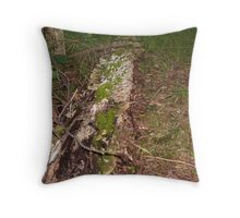 Blanketed with Moss Throw Pillow