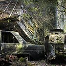16.5.2015: Scrap Cars and Abandoned House by Petri Volanen