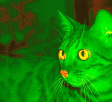 Green Jima by dnlkisa