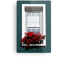 Gorey Window Metal Print