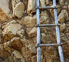 Rock Wall by Vicki Pelham
