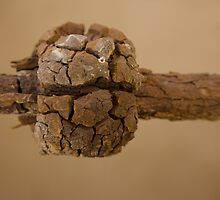 Rusted Bolt by Lucy Heber-Percy