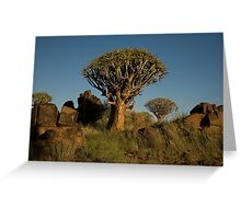 Double Quiver Tree Greeting Card