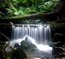 Westmorland Cascades 1 by Husky