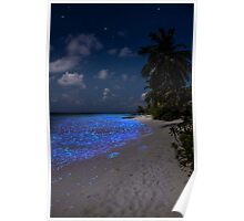 Fluorescent plankton in the Maldives - Indian Ocean Poster