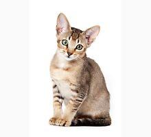 Charming kitten Unisex T-Shirt